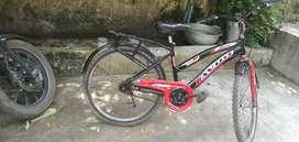 Avon zest power rider