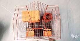 Beautiful cage