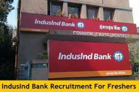 Career Opportunity In IndusInd Bank