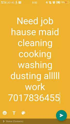 Need job hause sarvent cleaning cooking dusting washing alllll work