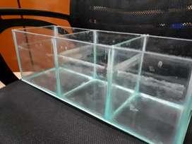 Betta aquarium tank