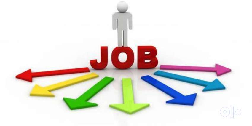 ALL TYPE OF JOBS 0