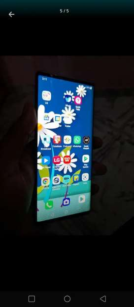 Lg wing 3 month very good condition