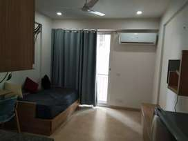 Luxury fully furnished studio apartment