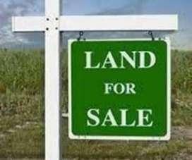 Original House plot for sale
