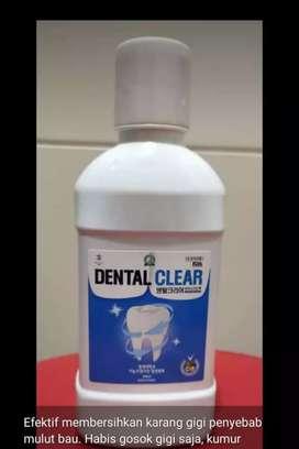 pembersih karang gigi