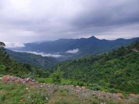 On road 15naali land in kimsar 1hr drive from aiims rishikesh.