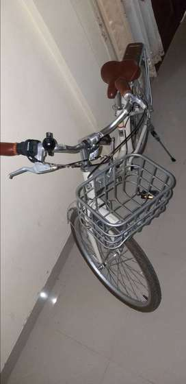 Sepeda polygon keranjang cewe