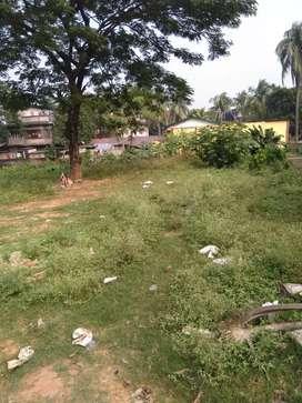 Plot of 1kotha approx  near Gitamandir main road