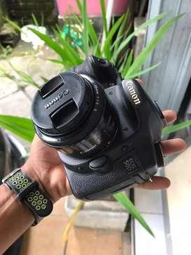 Canon 50d plus 50mm f1.8