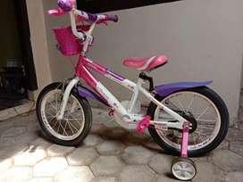 sepeda anak merek familly mulus
