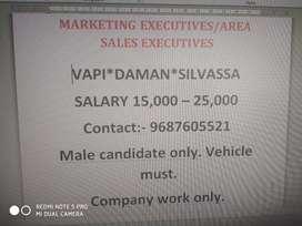 Area sales & marketing executive