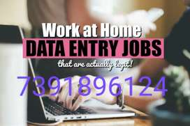 Offline assignment job simple data entry in notepad typing project
