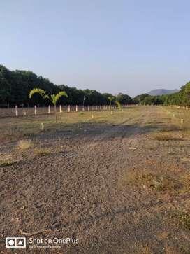 Agripalli plots for sale
