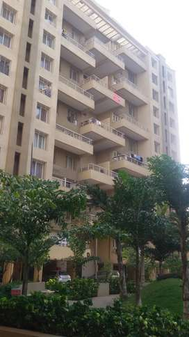 Penthouse ready to move in kondhwa
