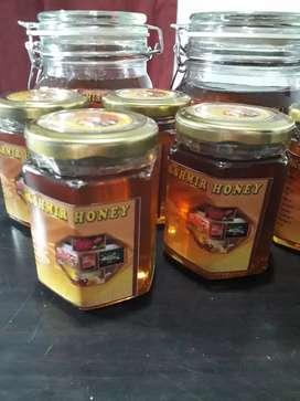Honey kashmir madu ecaliptus