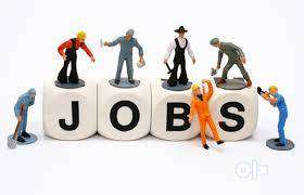 Simple online and offline jobs for Fresher's only. 0