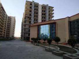 3+1 Flats for Rent & sale