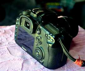 7d mark ii with 18-55 lens 2 battery beg