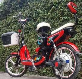 Sepeda listrik made in japan 48v.langka istimewa.mulus terawat.normal