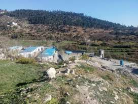 27 rooms and 3 factory like storages spread on 15 kanal land Mansehra