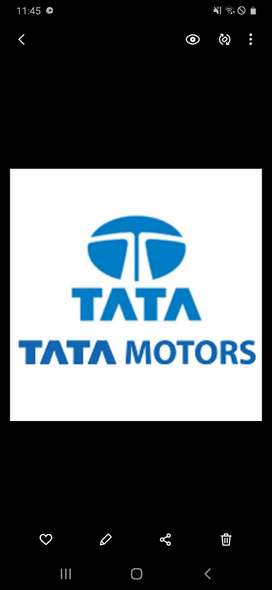 JOB IN TATA MOTORS LTD COMPANY