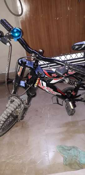 My bicycle 8 month used