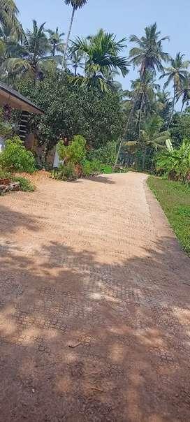 6.5 cent ,11 feet concrete road.Urgent sale