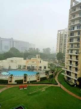 Park view city, sector-49, Sohna road Gurgaon