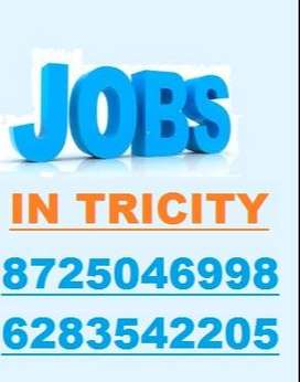 CHAT PROCESS REQUIRED FRESHER GRADUATES IN TRICITY