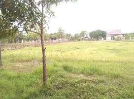 Jual tanah 5000 mtr di desa cot mesjid kecamatan lueng bata banda aceh