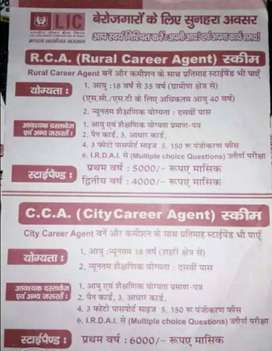 Requirement For LIC Agency Part-time Job , CALL