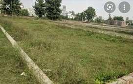 Total 8 plot 1000 Sq ft area each near CRPF camp bijnor Lucknow