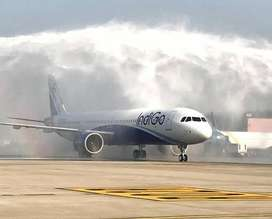 INDIGO COMPANY  ,indigo jobs full time Ground / Airport Station Attend
