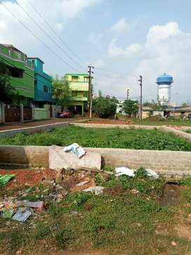 Residential plot sell at chakeisihani, Rasulgarh