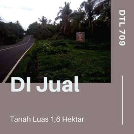 DTL 709 Tanah murah dan luas di Bali