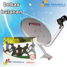 Parabola mini free to view, bebas bulanan