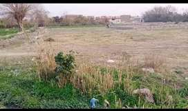 Plot for sale (Muhammad Nagar, Near Kohat Cantt)