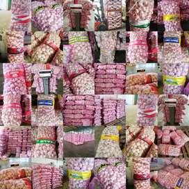 Distributor bawang putih sinco / kating