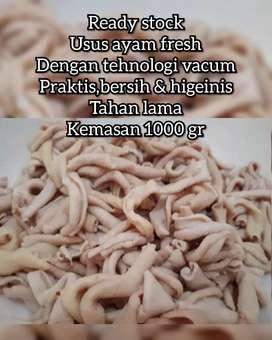 Jual usus ayam fresh