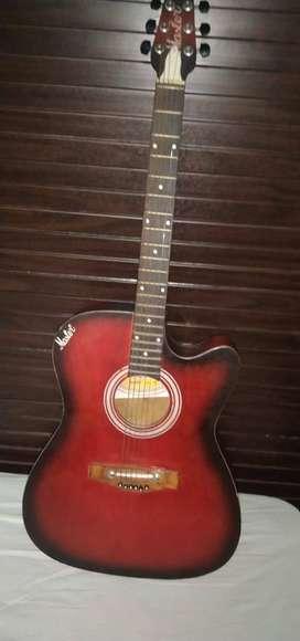 Master Guitar 1 Month Old.