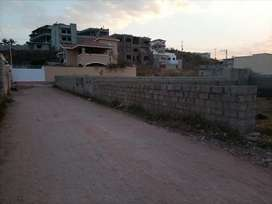 One kenal plot available for sale in main bani gala Bhara kahu road