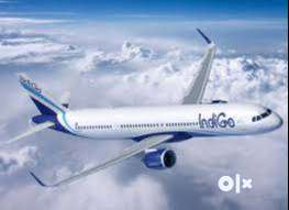 RECRUITMENT!!! NOW OPENS IN INDIGO AIRLINES JOIN US.  This Opportunity 0