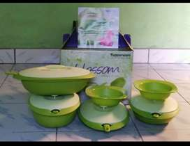 Wadah plastik Tupperw4r3 seri BLOSSOM (hijau)
