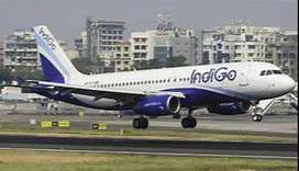 Jobs in Ground staff-- airport airlines latest jobs,  indiGo Airlines