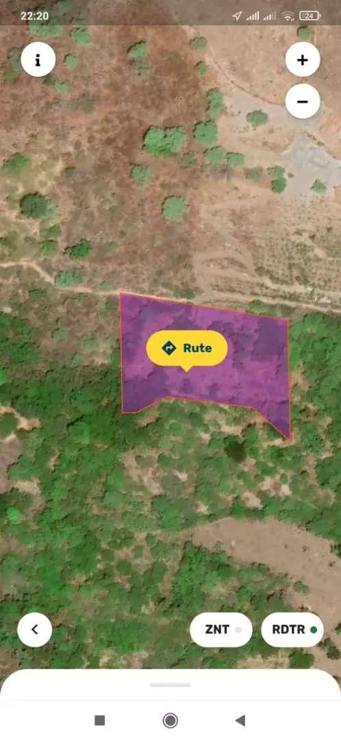 Tanah Investasi Dengan 100 Pohon Jati Siap Panen 0