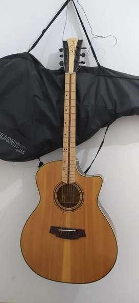 guitar acoustic COLE CLARCK