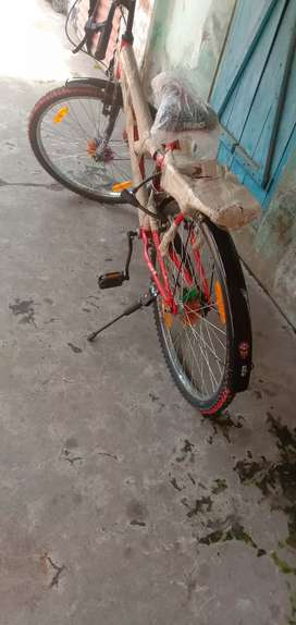 MSD Bicycle