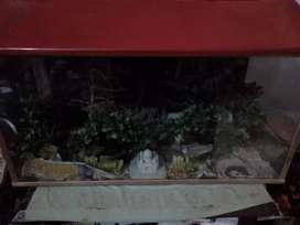 Big and heavy glass aquarium