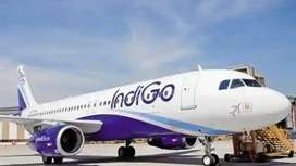 Hiring for ground staff in  IndiGo airline